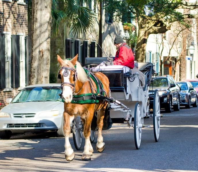 Charleston Carriage